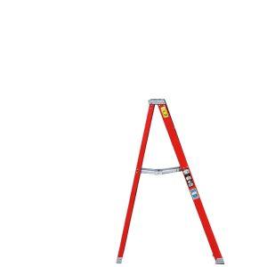 Ladder / 6'