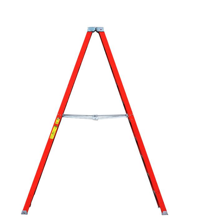 Ladder / 10'